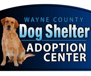 Wayne County Dog Shelter Logo