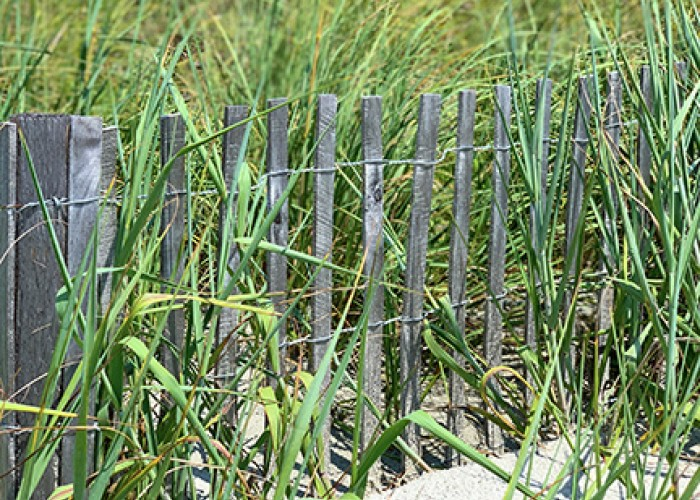 Conservation Buffer Fence